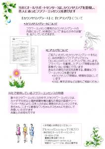 FlowerEssence_販促資料_01a_blog用_20141224?